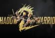 Shadow Warrior 2 не запускается