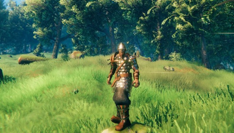 All armor in Valheim