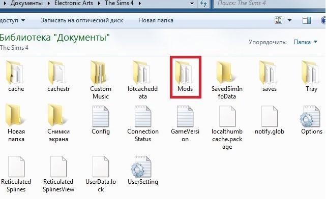 script error in the sims 4